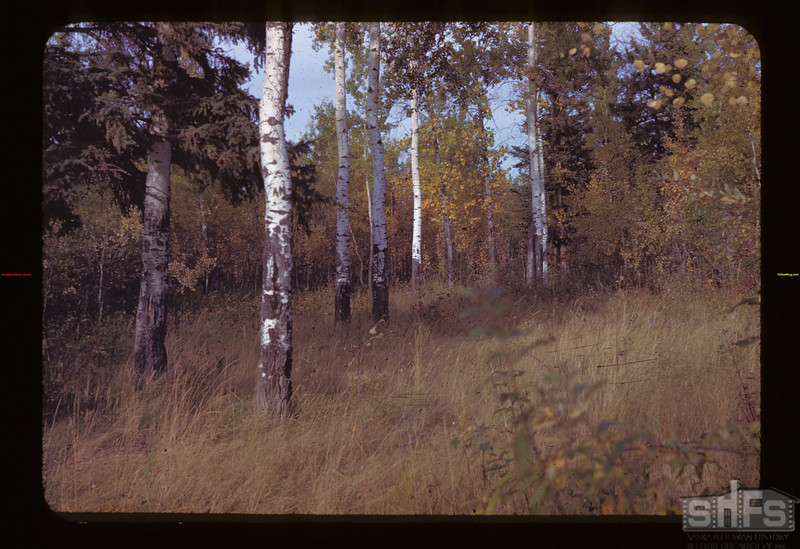 North Beach	 Loon Lake	 09/22/1943