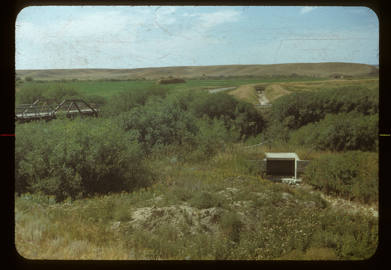 Irrigation - White Mud River - SE of Eastend. Eastend 09/03/1948