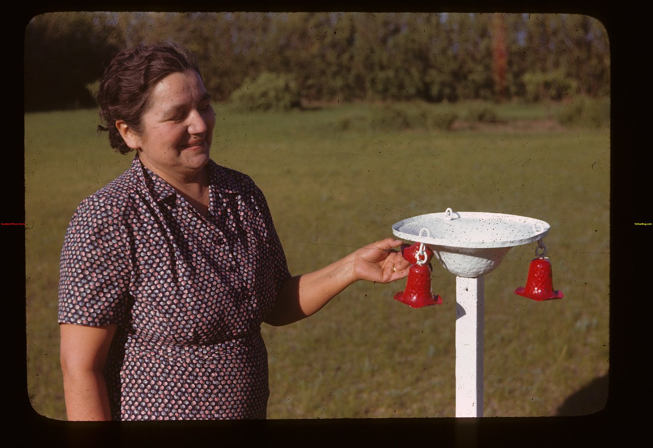 Mrs. Clyde Rose bird bath and bells Liberty 06/15/1946