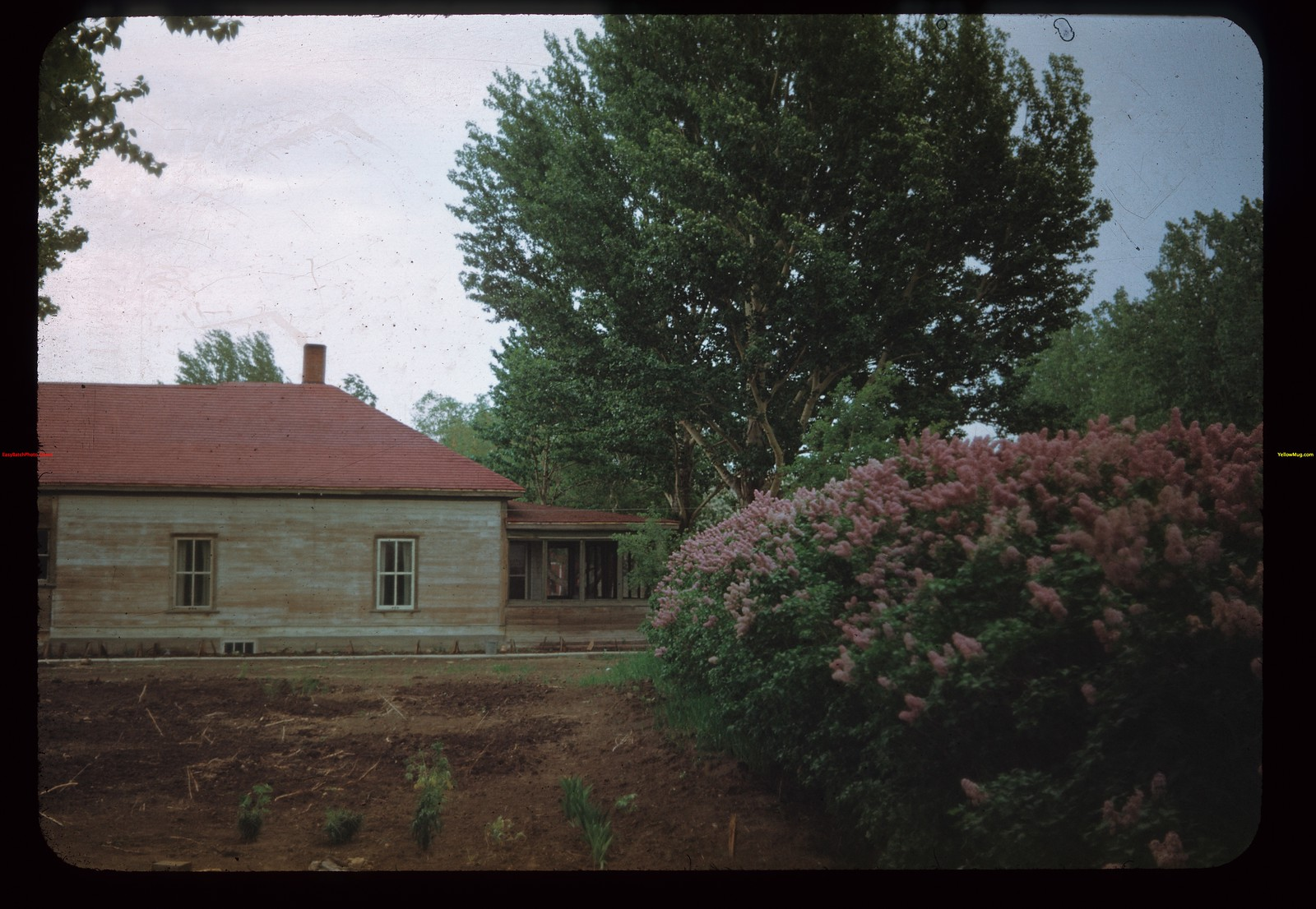 """Z-X"" House W. of Lilacs	 Eastend	 06/04/1948"