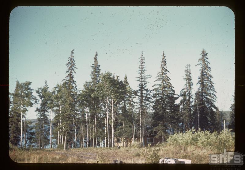 Approaching Hogan's mink ranch - Trout Lake Beacon Hill 08/23/1944