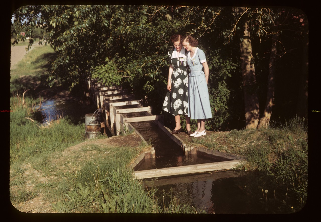 "Irrigation Flume Tempting - Theo Bryce & Marjorie Cook ""Dare we go wading""	 Eastend	 06/11/1949"
