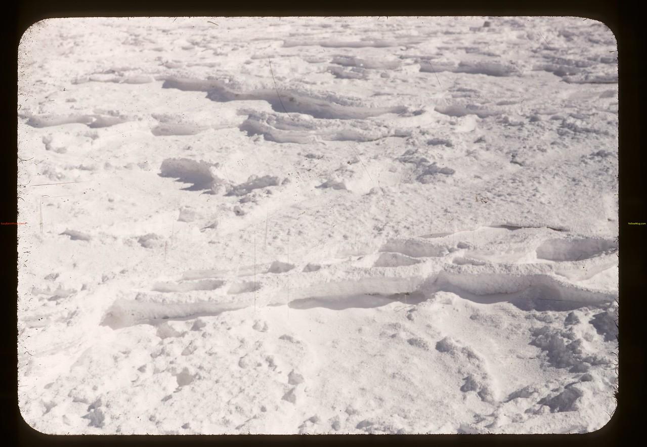 NaSO4 crystal precipitation. Chaplin 05/28/1948