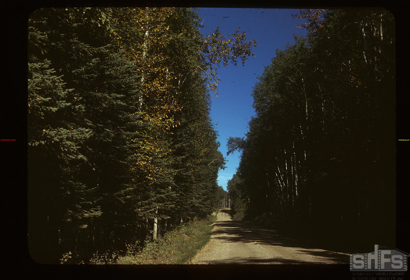 Road around Madge Lake	 Kamsack	 09/14/1949