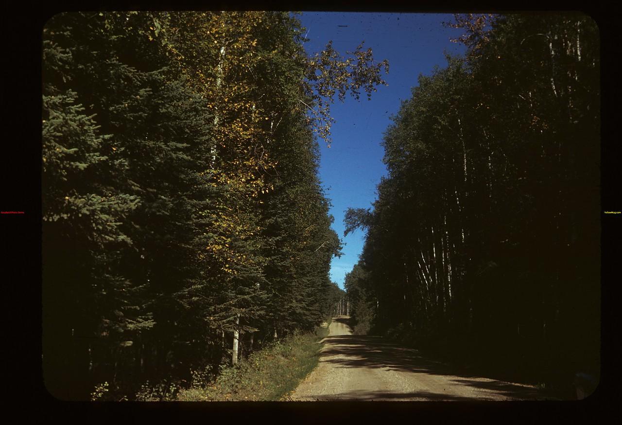 Road around Madge Lake Kamsack 09/14/1949