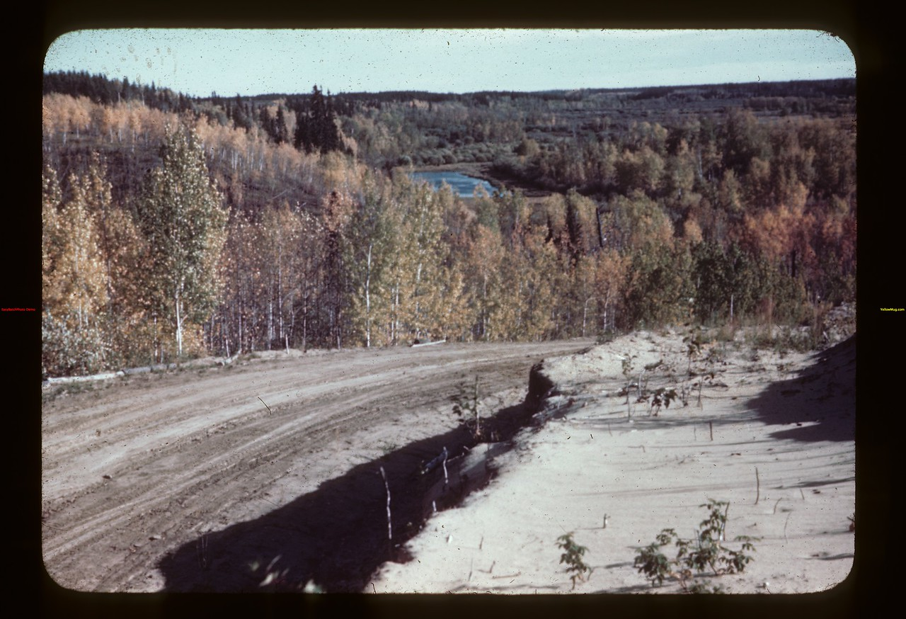 Down hill to Beaver River from NW. Golden Ridge 09/23/1944