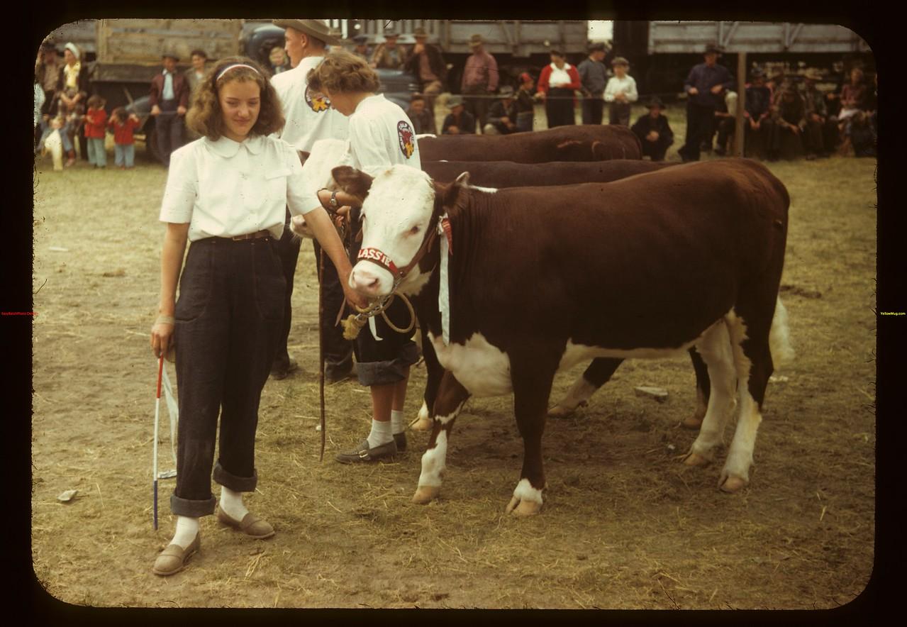Dorothy Jones and light weight champion calf Consul 05/31/1949