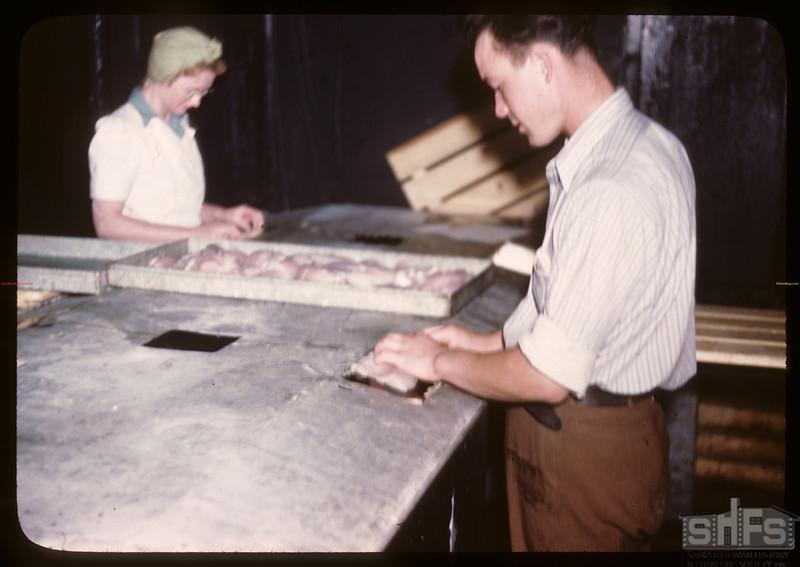 Candling fillets - Beaver Lake filletting plant 15 miles from Flin Flon. Beaver Lake. 06/21/1946