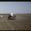 Spraying at Harry Wickstrom's.	 Admiral.	 06/20/1949