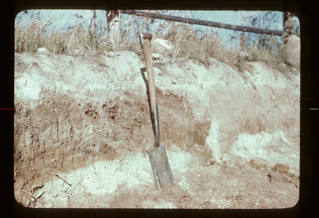 Soil horizons Golden Ridge 09/23/1944
