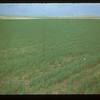 Flax - Matador Co-op Farm Matador 07/07/1948