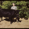 Mrs Bob Gray and Harold's Grand Champion Calf	 Crichton	 06/05/1949