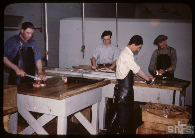 Filletting White Fish. Beaver Lake. 06/21/1946
