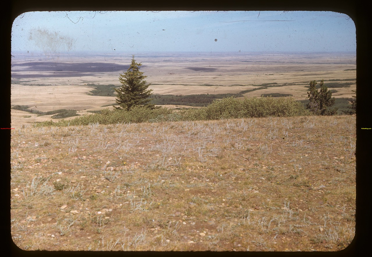 View of maple Creek from Cypress Hills	 Cypress Hills	 08/24/1948