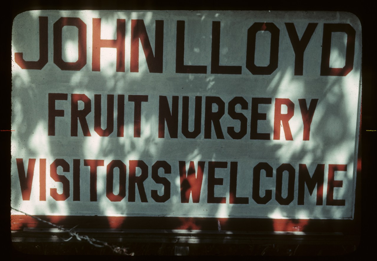Entrance sign to John Lloyd's nursery. Adanac.   08/19/1942