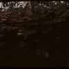 Edge of coal seam..  Shaunavon.  06/18/1947