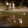 Swans - Crescent Park.  Moose Jaw.  07/02/1947