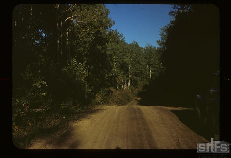 Road to Madge Lake. Duck Mt. Park Kamsack 09/14/1949