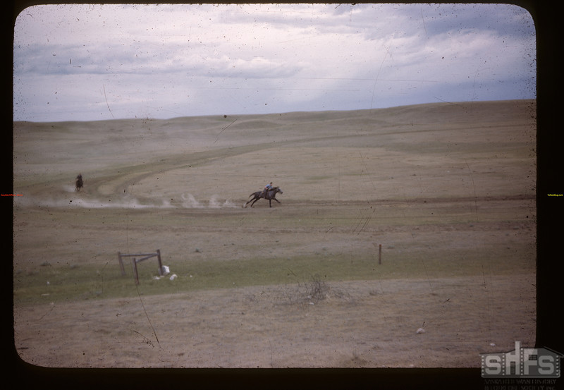 Mankota sports ground - [horse] race. Mankota 06/05/1946