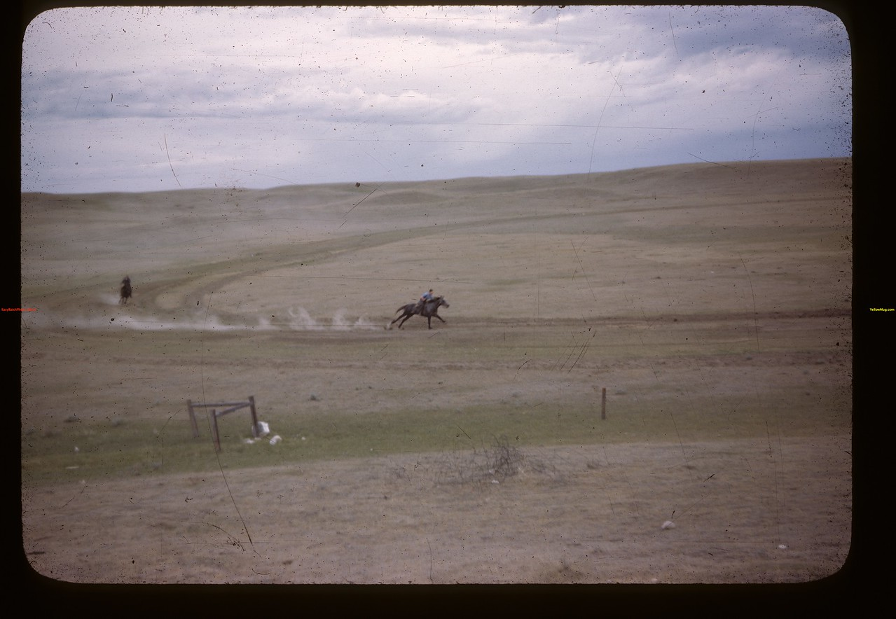 Mankota sports ground - [horse] race.	 Mankota	 06/05/1946