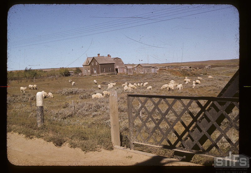 East of sheep	 Cadillac	 09/12/1941