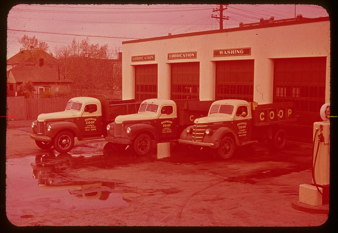 Sherwood Co-op delivery trucks.  Regina.  10/09/1947