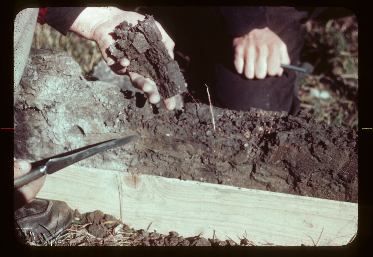 Columnar structure soil from B horizon	 Loon River	 09/23/1944