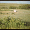 Site of Farwell Store north of Batle Creek	 Maple Creek	 07/04/1948