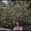 Mrs. William Pohlman with apple blossoms..  Shaunavon.  05/17/1952