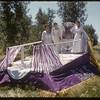 Jubilee Fair Parade - Elks float.  Shaunavon.  07/26/1955