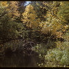 Pool in Mt. Stream S. Fork Valley.  South Fork.  09/21/1952