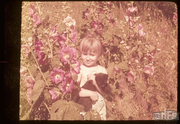 Dixie Lee Voll in the Hollyhocks..  Shaunavon.  08/12/1953