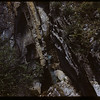 Rock strata Marble Canyon Falls.  Kooteney N. P..  09/28/1951