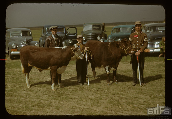 Meyronne's best at show - Alex McCaslin leader. Aneroid. 06/01/1950