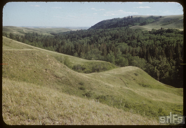 Looking S.W. from Upper Shaaunavon Lease.  South Fork.  06/25/1954