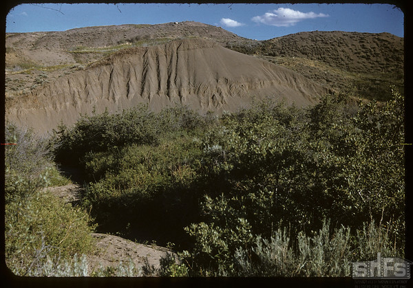 Creek and fluted soil bank on McNabb's ranch.  Val Marie.  06/29/1957