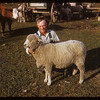 Don Neeley with sheep. Carnagh PO. 09/16/1952