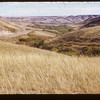 """Looking South Down """"Bready's Coulee.  Eastend.  09/15/1952"""