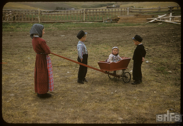 Bench Colony Hutterite children..  Shaunavon.  08/03/1957