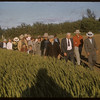 Test Plot picnic on the march.  Shaunavon.  07/27/1956
