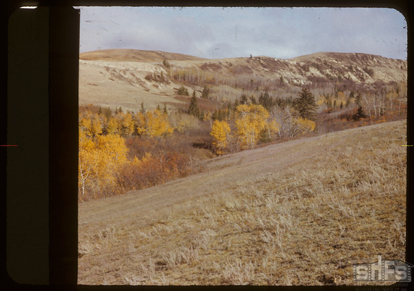 Valley of the S. Fork N. of Anxiety Butte.  South Fork.  10/14/1950