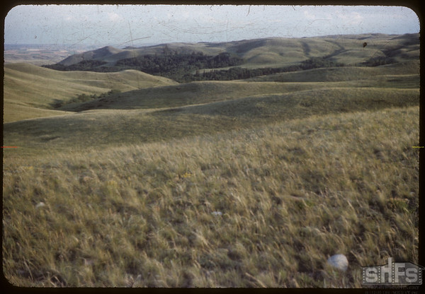 Wooded area looking S.E.  from W. above S.F.Valley.  South Fork.  06/27/1954