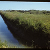 Irrigation canal at 70 Mile Crossing.	 Val Marie	. 07/05/1951