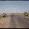 Hay racks at the roadside.  Shaunavon.  07/21/1956