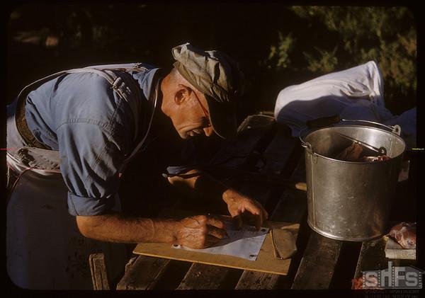 Pioneer beef ring - Steve Grubbe adding weights.  Shaunavon.  08/26/1950