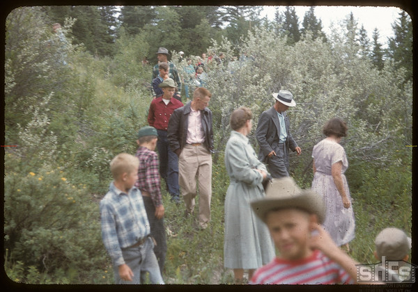 Test Plot Picnic Pine Cree Park.  South Fork.  07/27/1956