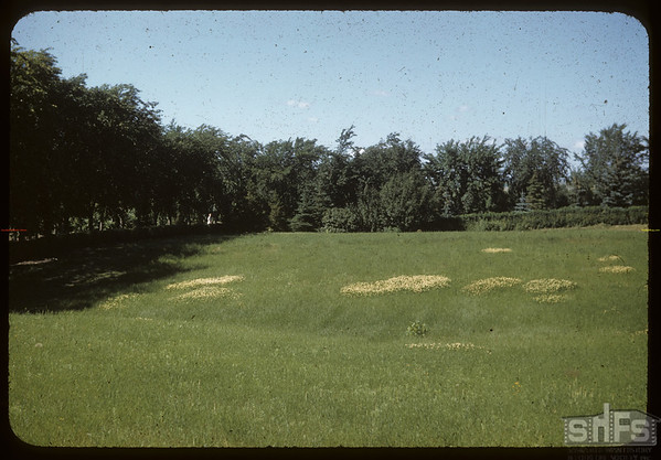 Dominion Experimental Farm.  Swift Current.  07/13/1955