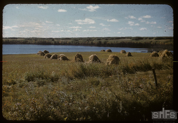 View 7 miles south of St. Walberg.  St. Walburg.  09/16/1956