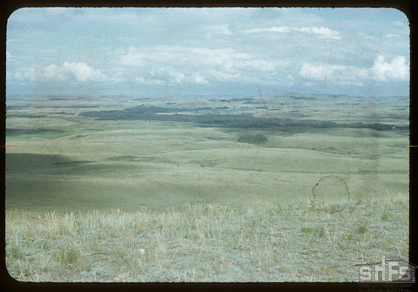 Going West toward Goodtrack's and LeCaine's.  Wood Mountain I. R..  08/07/1954