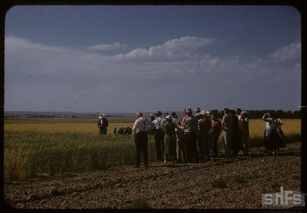 Test Plot supervisors at experimental farm.  Swift Current.  08/05/1957